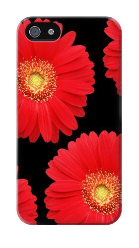 Printed Red Daisy flower Iphone 4 Case