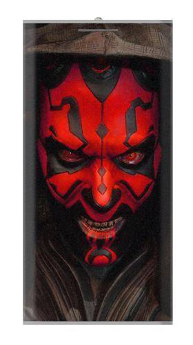 Printed Darth Maul Power Bank 12000mAh Case