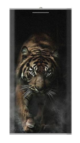 Bengal Tiger Iphone6 Case