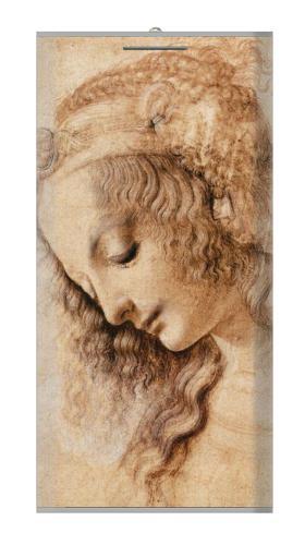 Leonardo da Vinci Woman's Head Iphone6 Case