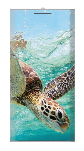Ocean Sea Turtle Iphone6 Case