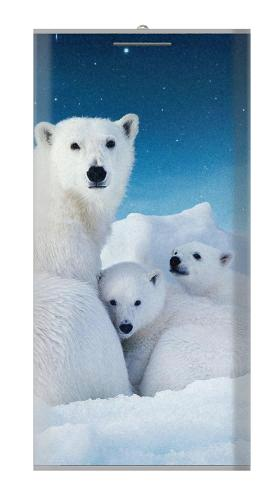 Polar Bear Family Arctic Iphone6 Case