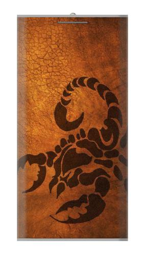 Scorpion Tattoo Iphone6 Case