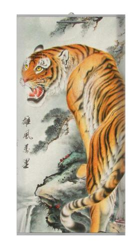 Chinese Tiger Painting Iphone6 Case