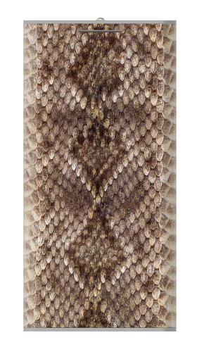 Rattle Snake Skin Iphone6 Case
