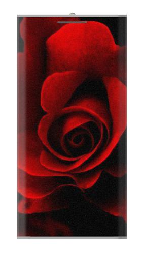 Red Rose Iphone6 Case