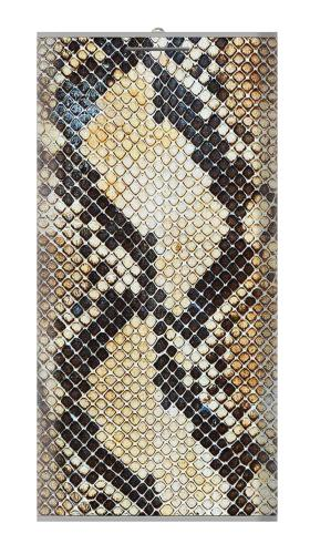 Snake Skin Texture Iphone6 Case