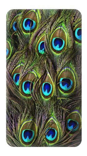 Peacock Feather Iphone6 Case