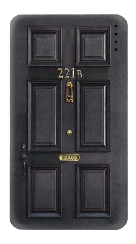 Sherlock Holmes Black Door 221B