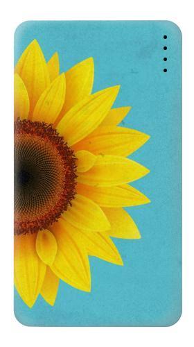 Vintage Sunflower Blue Iphone6 Case